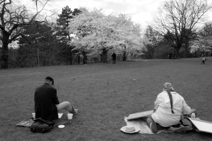 Cherry Blossom #14