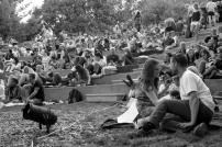 Audience Assembles