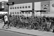 Bike Kensington