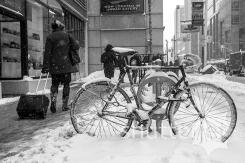 TO Snow Storm 23